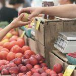 生鮮食品の表示について~知っておきたい農産物・畜産物・水産物の原産地表示ルール~